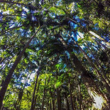 Natura – Aspetti collaterali