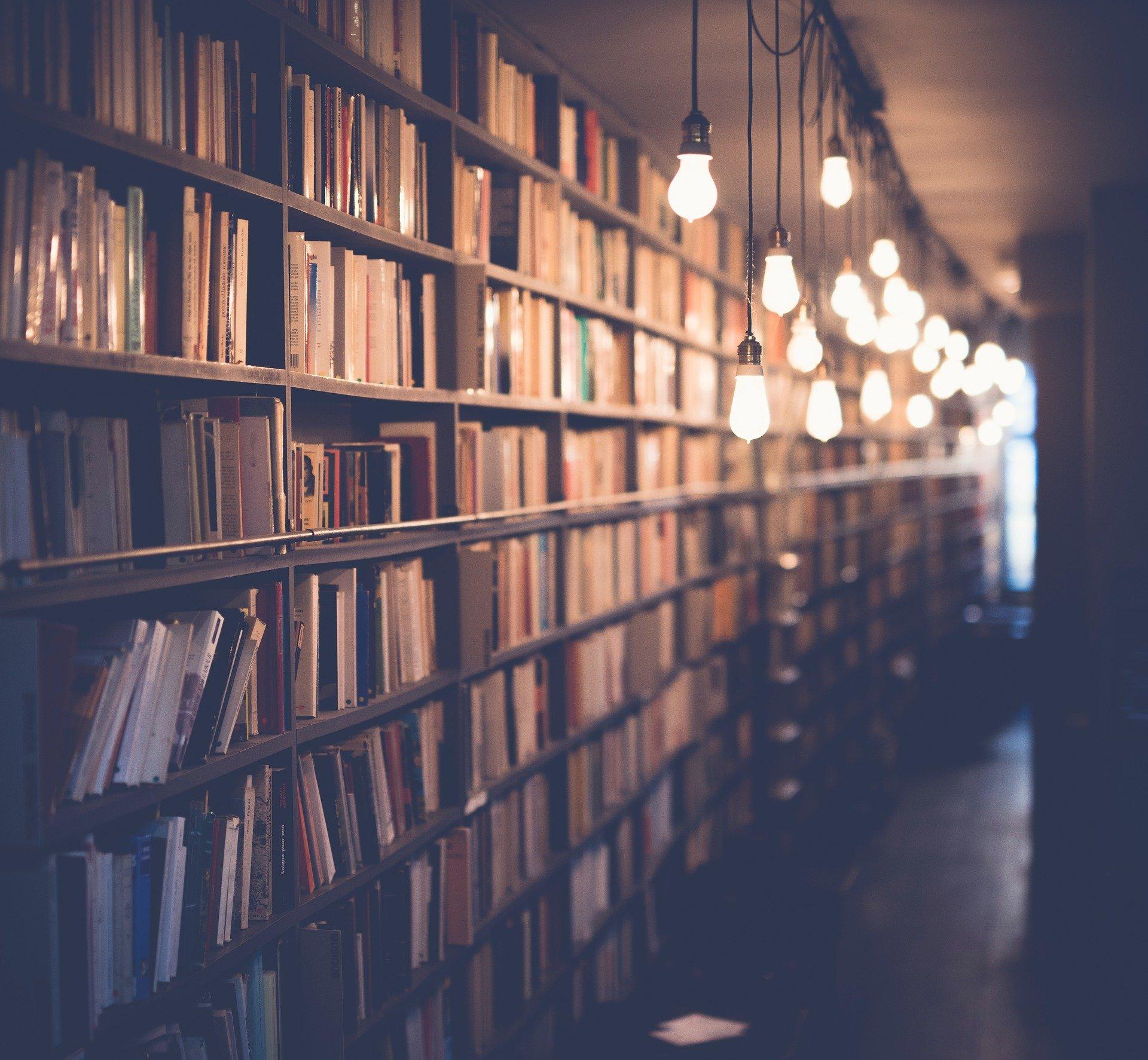 Libri di viaggi libreria luci soffuse