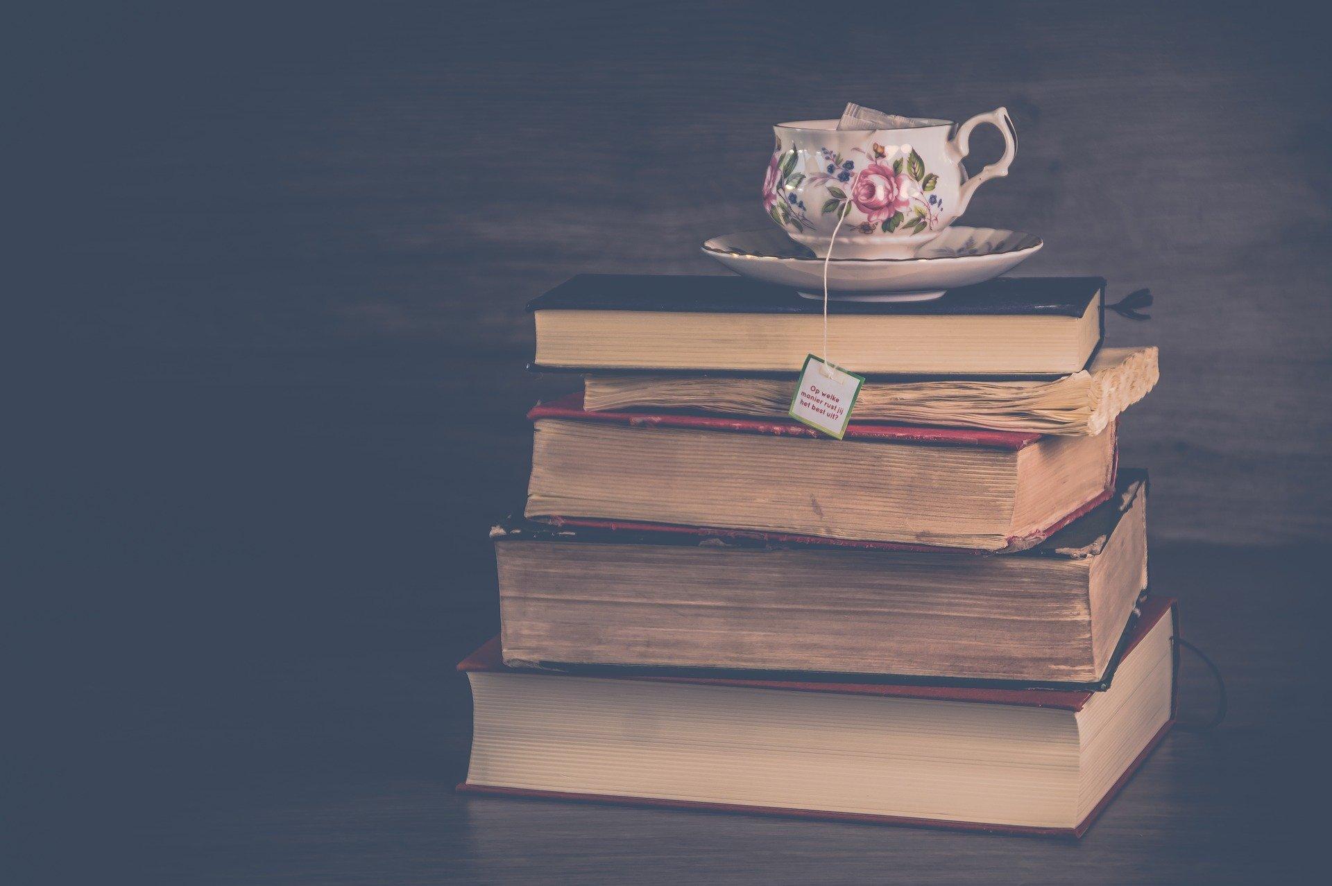 pila di libri di viaggi